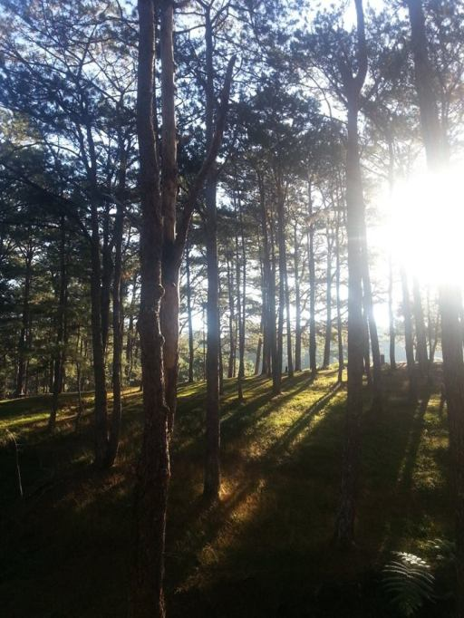 Baguio Run